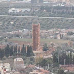 mansoura Tlemcen
